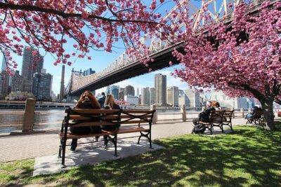 Obraz Nowy Jork / Roosevelt Island