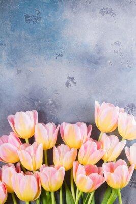 Obraz Obramowanie różowe i żółte tulipany na szarym tle kamienia z miejsca kopiowania