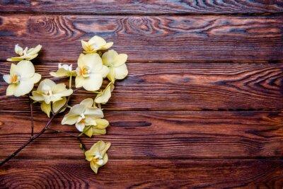 Obraz Oddział żółtej orchidei na brązowym tle drewnianego