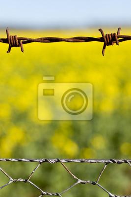 Ogrodzeniem z drutu kolczastego