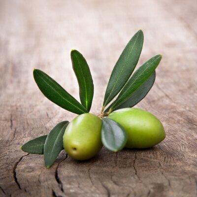 Obraz oliwki z liści