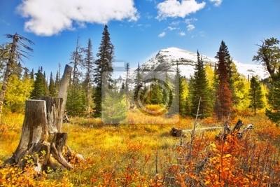 Olśniewające kolory jesieni