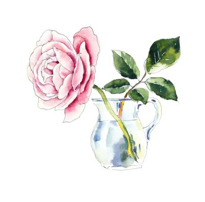 One pink rose in transperent vase. Watercolor painting. Flower backdrop. Greeting cards.
