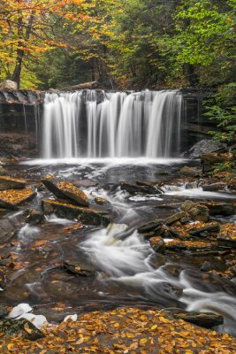 Oneida Falls Flow - Ricketts Glen, Pensylwania