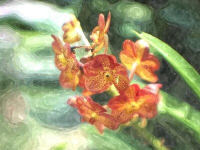 Obraz Orange orchidea akwarela / efekt sztuki fotografii