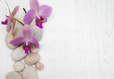 Obraz Orchidee i kamienie do masażu