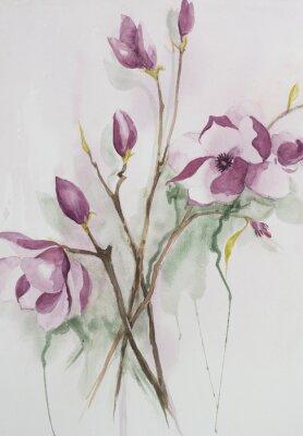 Obraz Oryginalny akwarela, kwiaty magnolii.