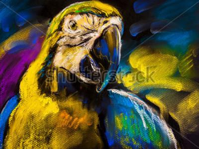 Obraz Oryginalny pastelowy obraz na tekturze. Nowoczesne malowanie pięknej papugi