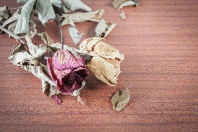 Obraz Ostatnim Valentine Rose.
