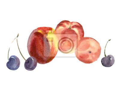 Owoce. Akwarela.