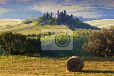 Paesaggio Toscano. Podere, campo di grano