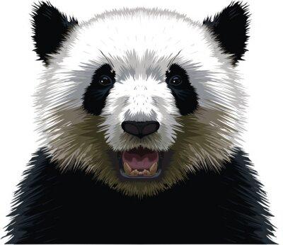 Obraz PANDA - Buste
