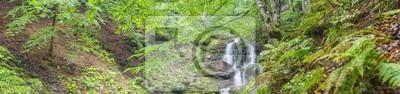 panorama szeroki kąt w kanionie z wodospadem