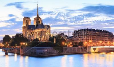 Obraz Panorama wyspy Cytuj z katedrą Notre Dame de Paris w Paryżu, Francja.