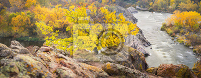 panoramiczny widok do kanionu z rzeką i żółtym drzewem na skałach