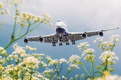 Obraz Pasażerski handlowy samolot lata nad kwiatów polami przy lotniskiem.