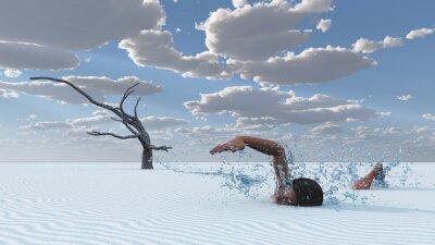 Obraz piaski pustyni pływak