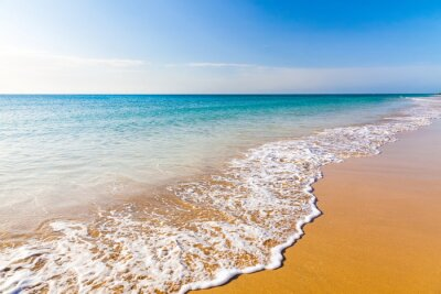 Obraz Piękna plaża ocean