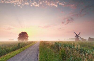 Obraz piękne lato wschód słońca na holenderskiej ziemi uprawnej