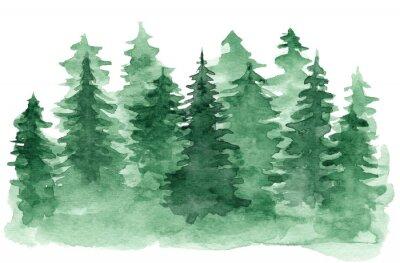 Obraz Piękne tła akwarela z zielonym lasem iglastym. Tajemnicza jodła lub sosna ilustracyjni dla zimy Bożych Narodzeń projekta, odizolowywającego na białym tle