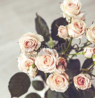 Obraz Piękny bukiet róż w zabytkowe brzoskwini wazonie na czarnym tle