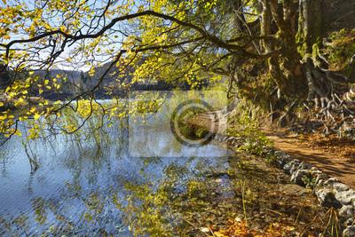 piękny jesienny dzień nad jeziorami w Chorwacji