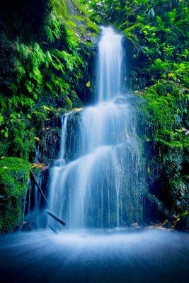 Obraz Piękny Lush Waterfall