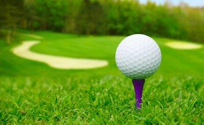 Obraz Piłeczka golfowa na kurs