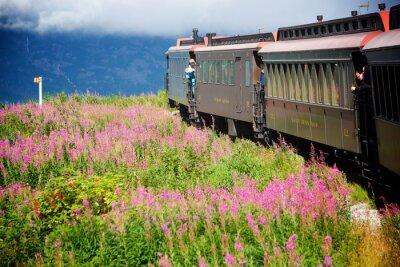 Obraz Pociągi Alaskan