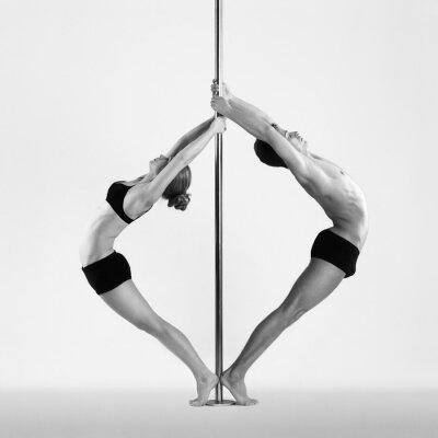 Obraz Pole Dance