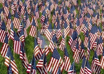 Pole Flagi USA