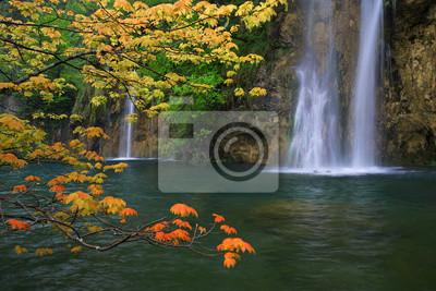 pomarańczowy klon pozostawia na tle wodospadu