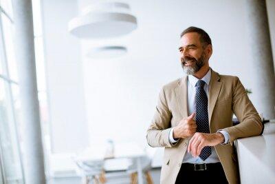 Obraz Portrait of senior businessman in the office