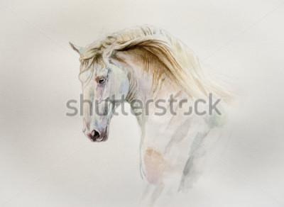Obraz portret konia lusitano akwarela