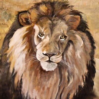 Obraz Portret pięknej męskiej ogromny lew afrykański