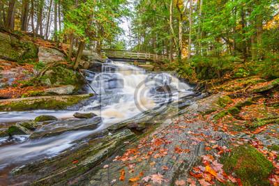 Potts Falls jesienią
