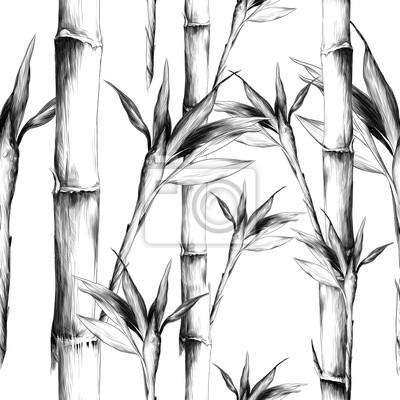 Obraz pozostawia gałęzie macierzystych bambusa wzór kwiaty tekstura rama bez szwu szkic wektor grafika monochromatyczny czarno-biały rysunek