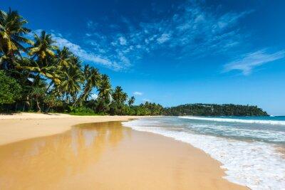 Obraz Przepiękna plaża. Sri Lanka