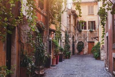 Obraz przytulna ulica w Rzymie, Włochy