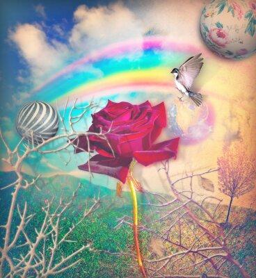 Obraz Rainbow i czerwona róża w zielonej dolinie
