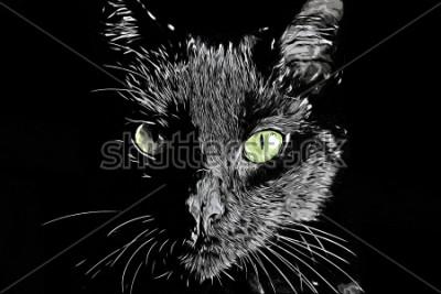 Obraz Raster twarzy Cat czarno-białe realistyczne ręcznie rysowane scratchboard stylu obrazu