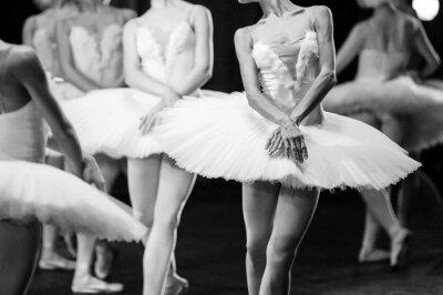 Obraz Ręce baletnic. Ręce baletnic. Balet stwierdzenie. Wielkie baletnic. Balerinki w ruchu.