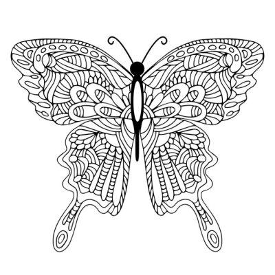 Obraz Ręcznie rysowane doodle Motyl