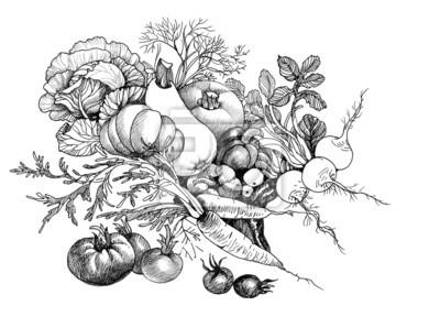 Ręcznie rysowane Martwa natura z warzyw