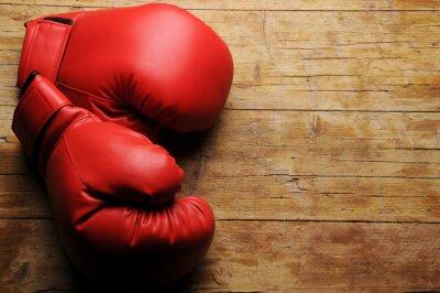 Obraz Rękawice bokserskie ¿En serio?