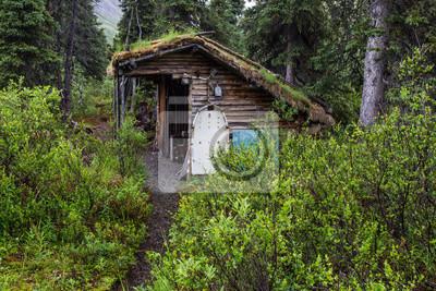 Obraz Richard Proenneke Cabin Historic Site in Lake Clark National Park in Alaska, United States