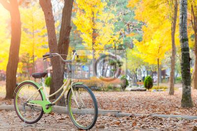 Rocznika rowerowy parking w jesień parku. Żywe jesienne liście.