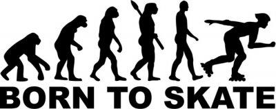 Obraz Rolkarzy Evolution