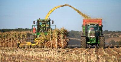 Obraz Rolnictwo en France