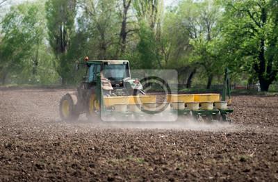 rolnictwo - uprawy gruntów ornych